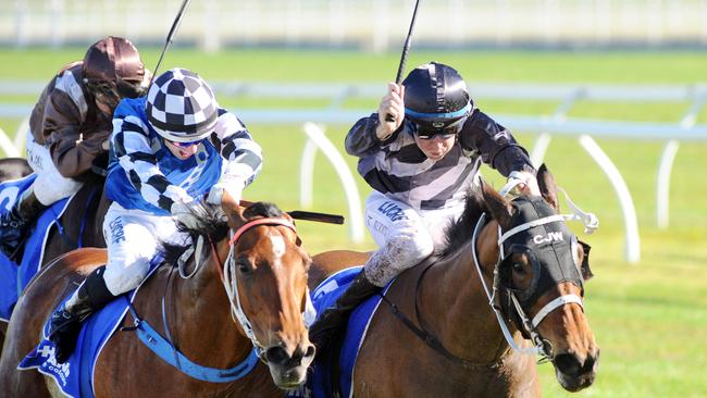 Oriental Lady (inside) and Saigon Tea hit the line locked together in a deceptive finish at Randwick's Kensington meeting last month. Oriental Lady got the nod in the photo finish which even fooled her trainer Kris Lees. Picture: Simon Bullard.