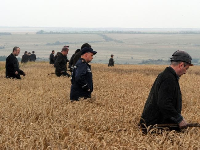 Painstaking search ... a group of Ukrainian miners assist rescue workers in the search for bodies of victims in a wheat field at the site of the crash.