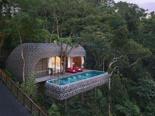 Best tree houses to stay in around the world.