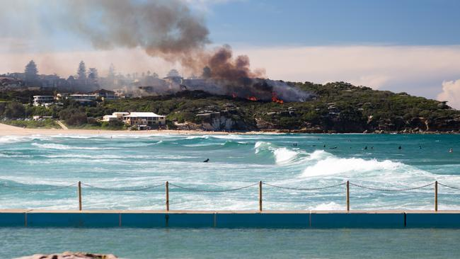 Fire at North Curl Curl. Picture: Alex Wilson