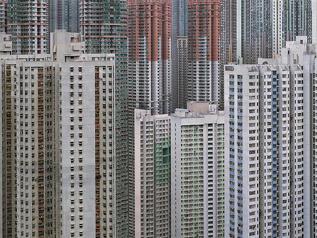Hong Kong Urban Jungle