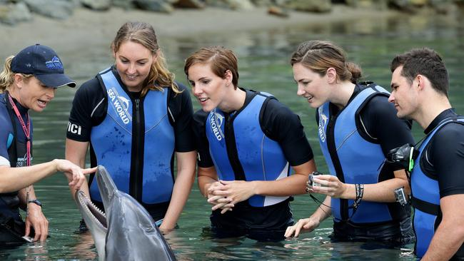 Australian swim team members Mel Gorman, Bronte Campbell, Cate Campbell and Christian Sprenger with Stella the dolphin at Sea World on the Gold Coast. Picture: Adam Head.