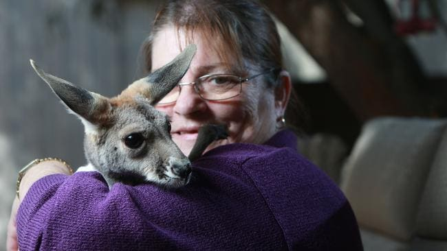 Josephine Brennan-Kuss, from Josephine's Gallery and Kangaroo Orphanage in Coober Pedy, with one of her kangaroos she's caring for.
