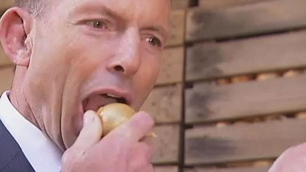 Image result for tony abbott onion