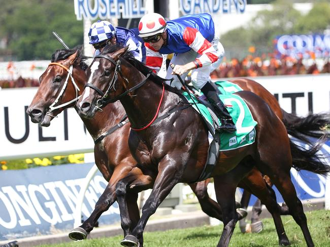 Single Bullet and Tye Angland (right) combine to win the Pago Pago Stakes. Picture: AAP
