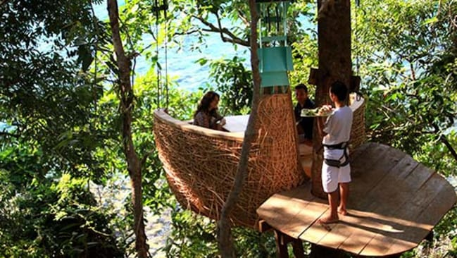 Dining among rainforest canopy is pretty incredible. Picture: Supplied