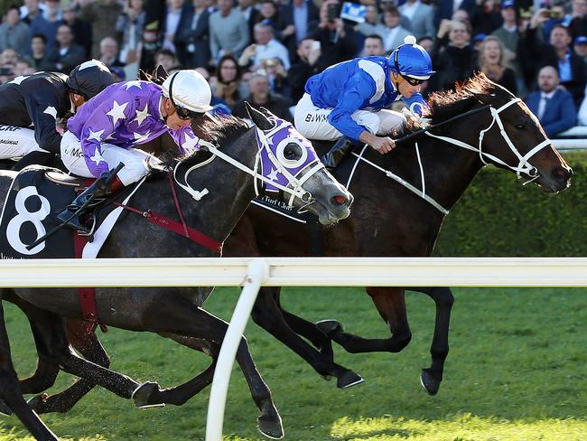 Winx salutes narrowly after a terrible start at Royal Randwick to make it 18 wins in a row. Picture: Sam Ruttyn