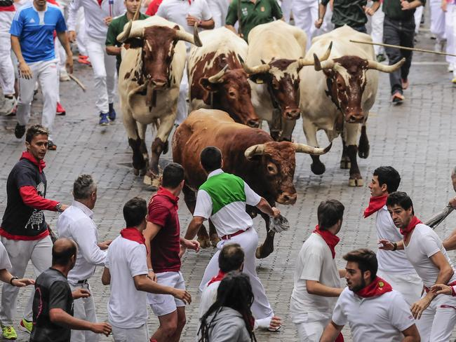 Runners run ahead of a 'Miura' fighting bull.