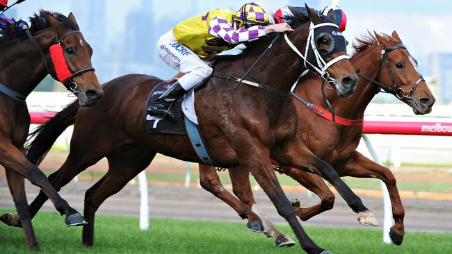 Sacred Flyer (gold and purple checked cap) overcame difficulties to win last start at Flemington and the son of High Chaparral can make it back-to-back wins on Saturday.