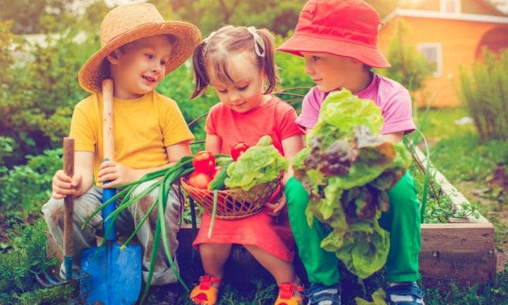 How to create the ultimate veggie patch with your kids