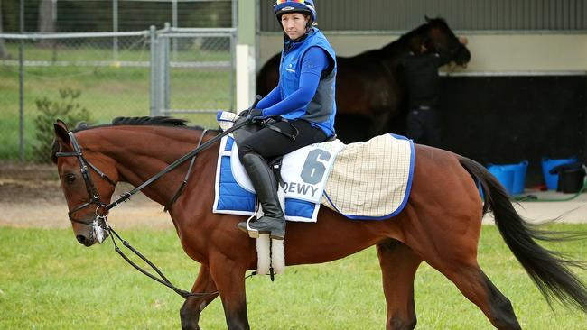 Trainer Charlie Appleby says Qewy has a good turn of foot. Picture: Mark Stewart