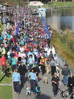 Thousands take part in The Million Paws walk at Elder Park. Picture: Tait Schmaal