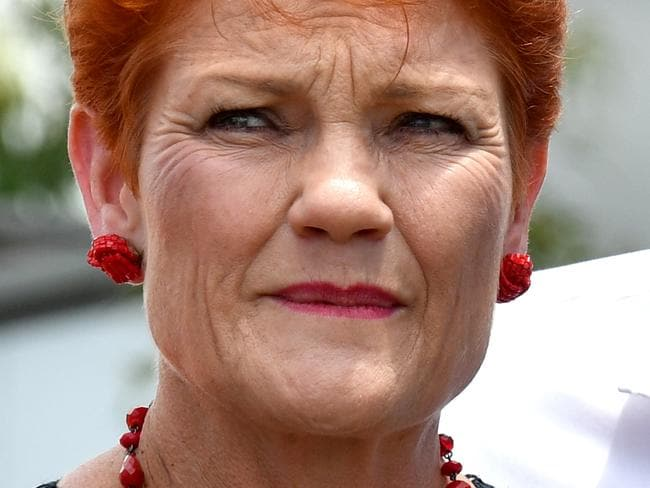 One Nation Leader Senator Pauline Hanson is greeted by supporters at the Jimboomba Tavern in Jimboomba, south of Brisbane, Thursday, November 23, 2017. Senator Hanson is on the campaign trail ahead of the Queensland state election. (AAP Image/Mick Tsikas) NO ARCHIVING