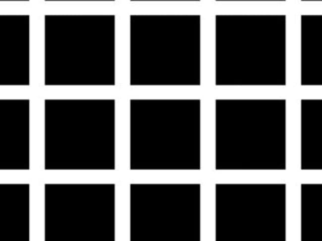The Herman Grid leaves people seeing grey dots at each intersection. Picture: Supplied.