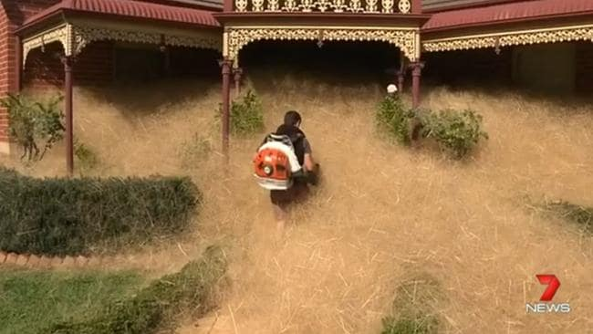 Getting to the front door is a challenge. Picture courtesy of Seven News