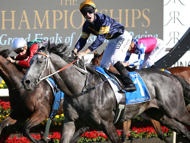 Biggest show in town: superstar sprinter Chautauqua is the early favourite for the much-anticipated $10 million Everest.