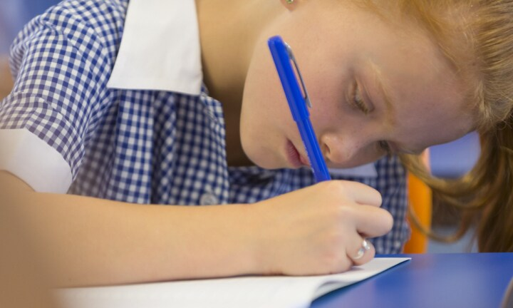 Education Minister says NAPLAN tests are here to stay