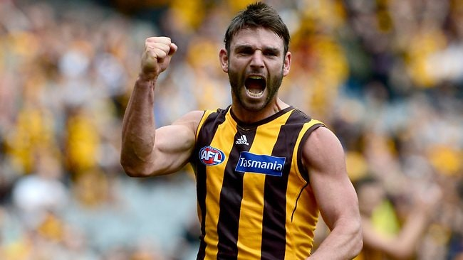 Hawthorn v Geelong,Goal, Brent Guerra, Picture: Ludbey Wayne