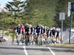 Dozens of groups of bike riders enjoying the mild conditions along Adelaide's coast on Lady Gowrie Drive, Largs North, ahead of the Tour Down Under. 14 January 2018. (AAP Image/Dean Martin)