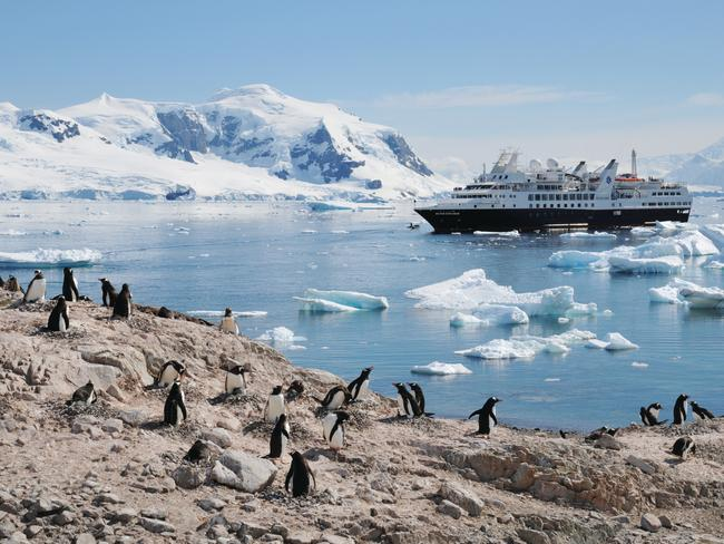Are you interested in Antarctica? Picture: Silversea
