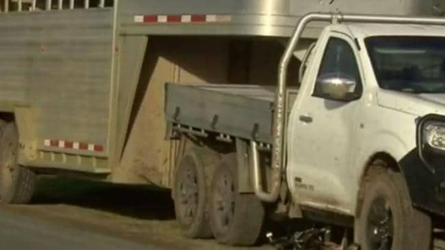 A cyclist is dead after colliding with a ute towing a trailer of cattle in Yannathan. Picture: Channel 9