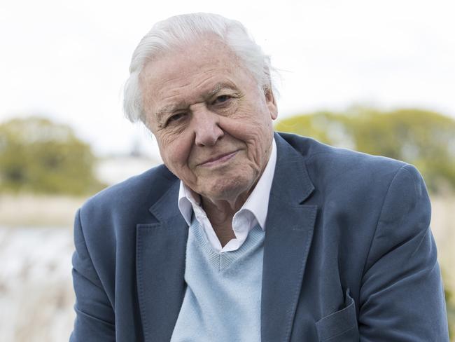 At 90, Sir David Attenborough has delivered his most gripping documentary yet. (Photo by John Phillips/Getty Images )
