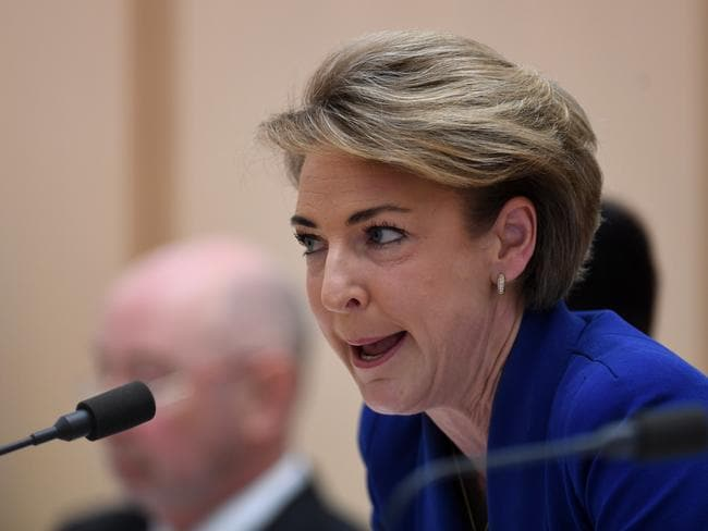 Employment Minister Michaelia Cash maintains that she was not notified of the raids until she saw them on television.