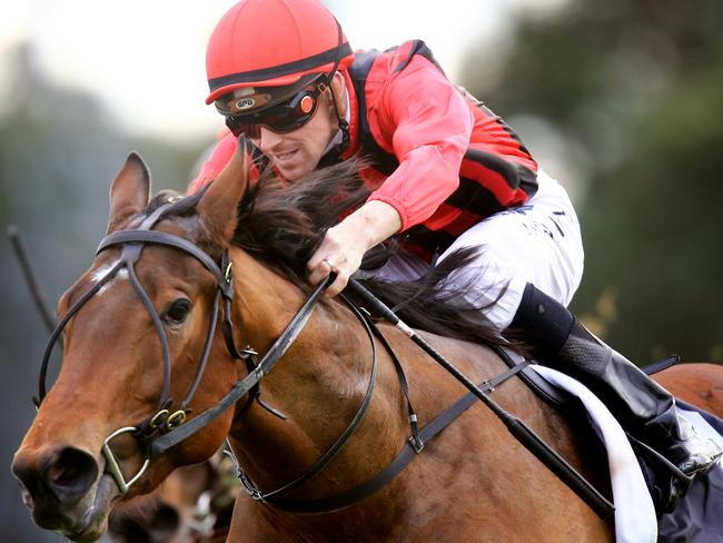 Sultry Feeling is expected to run in Saturday week's Furious Stakes for the Cummings stable. Picture: Mark Evans