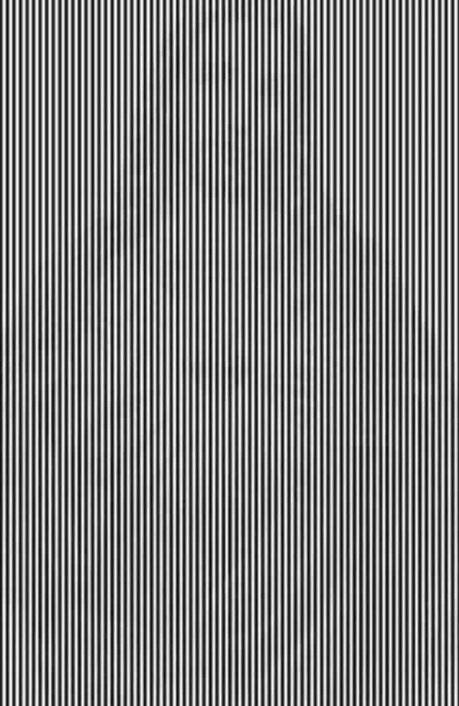 Just a bunch of bars right? Shake your head from side to side, what do you see? Jesus perhaps? Picture: Supplied.