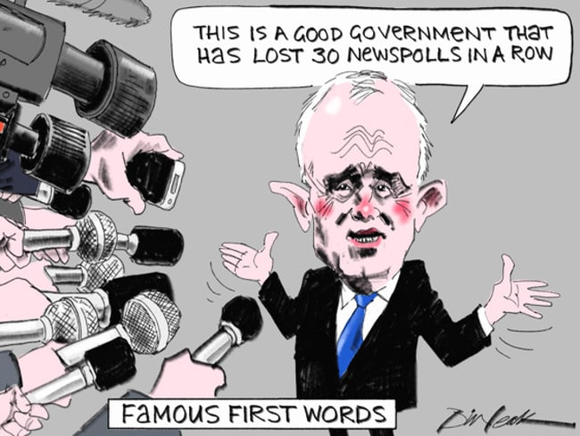 Image result for cartoon turnbull