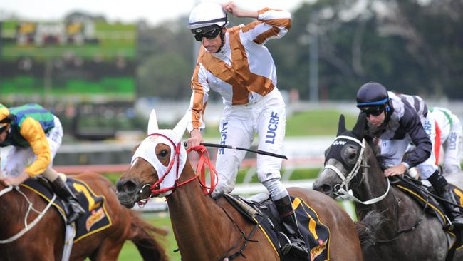 Nash Rawiller celebrates winning the All Aged Stakes on Japanese mare Hana's Goal. Picture: Simon Bullard.