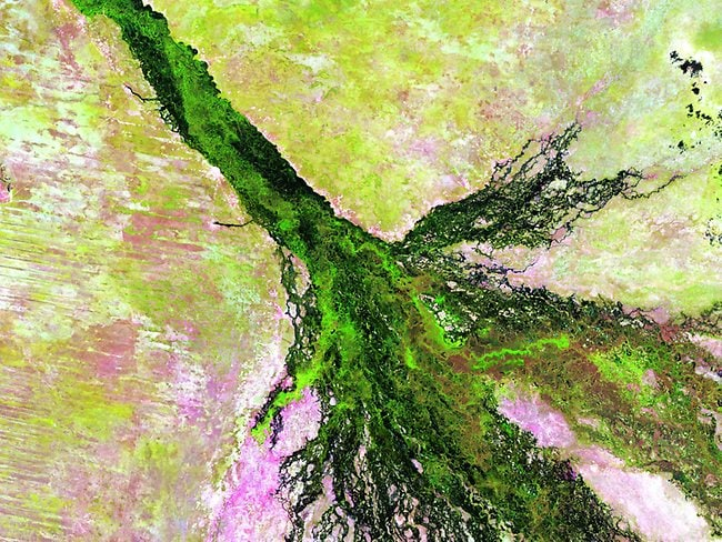 Landsat 5 images: southern Africa's Okavango River spreads across the pale, parched landscape of northern Botswana to become the lush Okavango Delta. The delta forms where the river empties into a basin in the Kalahari Desert, creating a maze of lagoons, channels and islands where vegetation flourishes, even in the dry season, and wildlife abounds. Photo: USGS