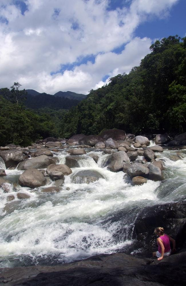 Exploring The Daintree Rainforest Is An Adventure Straight