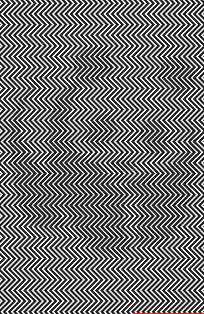 Can you see the panda hiding in this incredible optical illusion? Picture: Ilja Klemencov