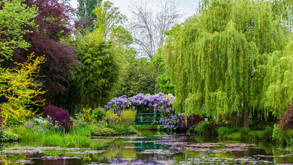 Secret Garden: You Don't Have To Be A Millionaire To Absorb The Lessons