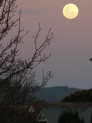 A stunning shot of the super moon by Lisa Javier, of South Australia, sent in via Facebook.
