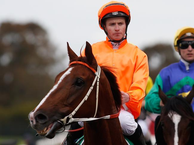 James McDonald and Entirely Platinum were given a dream run, according to stewards