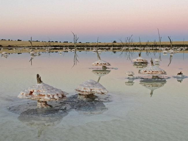 Salt's eating the Australian landscape ... Salinity at Quairading, Western Australia in 2011. Pic: Keith Lightbody
