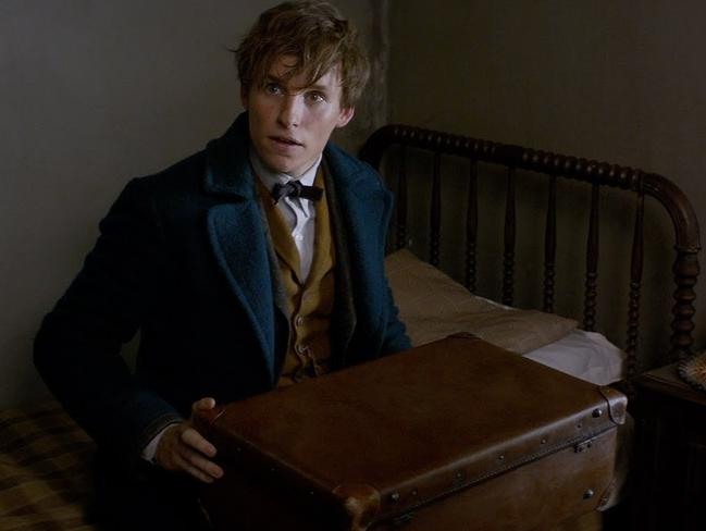 Fantastic Beasts ... It's not Harry Potter but there's magic and a British boy.