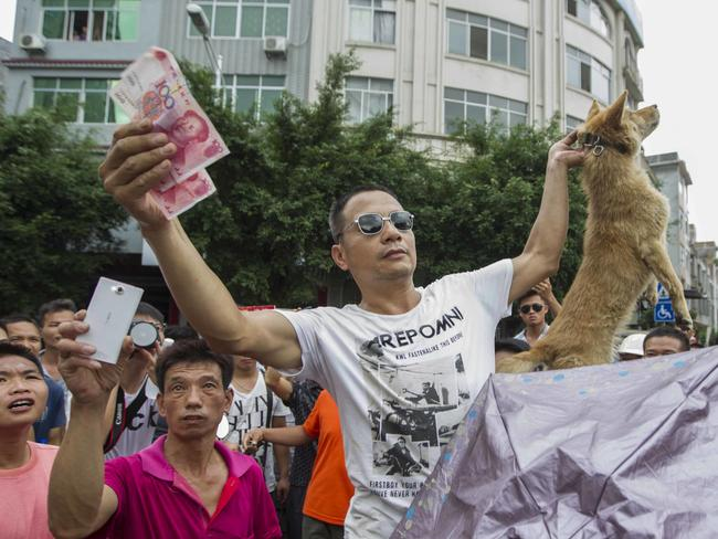 A vendor with a dog at the Yulin Dog Meat Festival in Yulin city. Picture: Getty