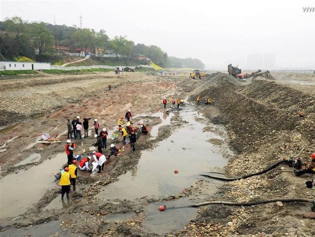 The site of the archaeological excavation at Pengshan District in Meishan City. Picture: Xinhua