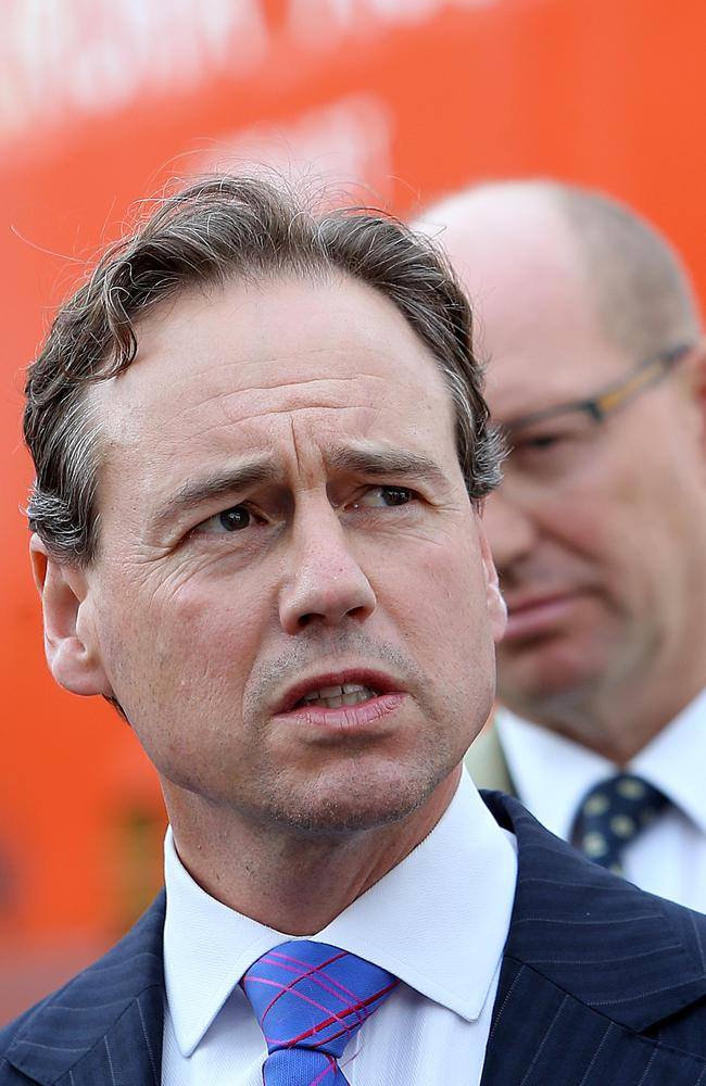 "Everyone's looking at the bright side of the #Palmgore plan, even the Government. Environment minister Greg Hunt last night said the government had been ""vindicated"" — the carbon tax will go. Picture: News Corp Australia"