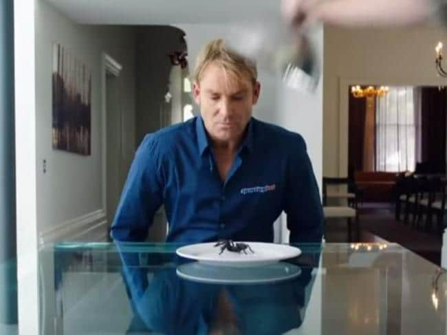 Warnie's arachnophobia was outed in a 2014 betting ad.