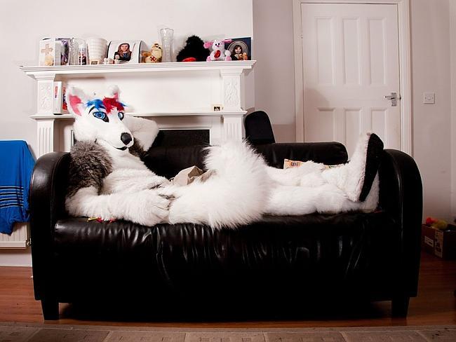 The bizarre world of 'furries'