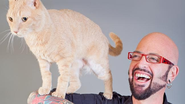 My cat from hell s jackson galaxy debunks common cat myths for Jackson galaxy cat toys australia
