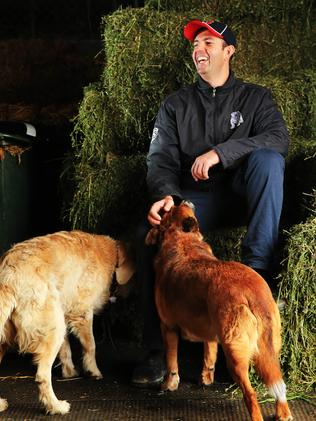 Jason Coyle at his Warick Farm stables. Picture: Mark Evans