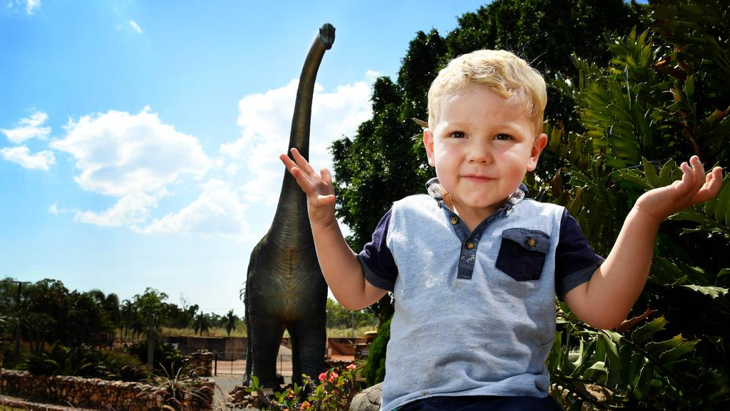 Youngster Markus Tudehope, 2, will be devastated if the 'Big Kev' the Dinosaur disappears from its current home, where it looms over the Stuart Highway in the garden area of Finlay's Stone/Cafe in Yarrawonga Picture: Justin Kennedy