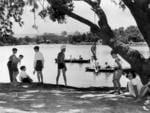Something you'd never see today - children play in and around the River Torrens in 1951.