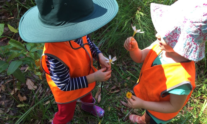 Kids learning at the nature school. Picture: supplied.