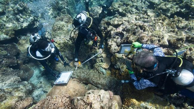 Maritime archaeologists Renee Malliaros, left, and Pete Illidge, right, work with team member Lee Graham, centre, to document a cannon at one of the shipwreck sites discovered at Kenn Reefs. Picture: AAP Image/ Julia Sumerling, Silentworld Foundation